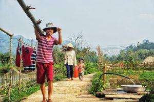 5 consejos antes de llegar a vietnam