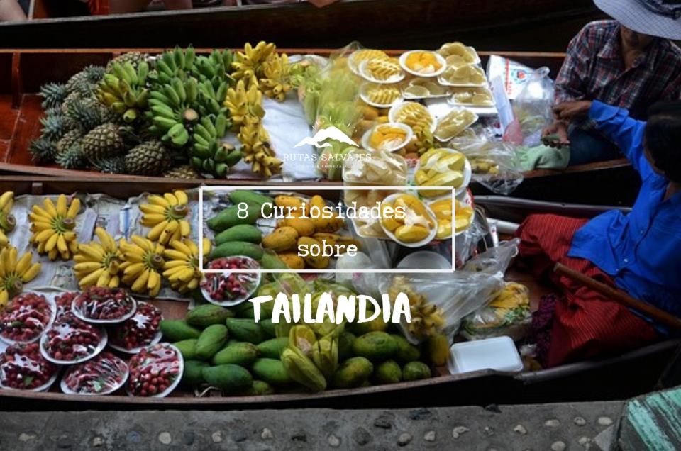 8 curiosidades sobre tailandia